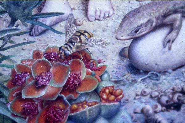 Detail from painting showing Hover Fly